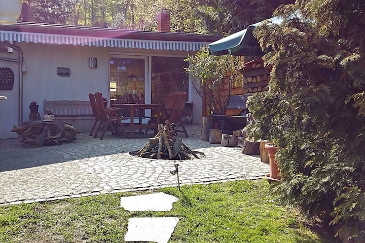 Holiday home in the beautiful Harz region with wood stove, large terrace, barbecue and fire pit