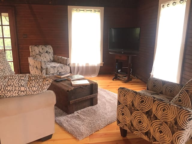 Open concept, spacious living room with wide plank pine floors and pull out queen sofa