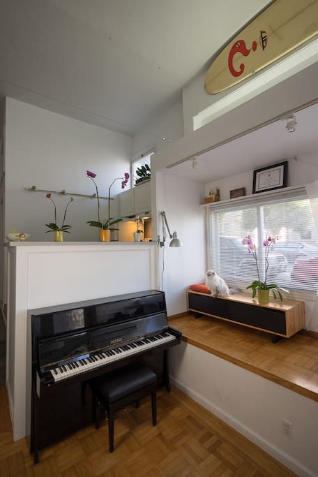 There is a 1973 Petrof studio upright piano!