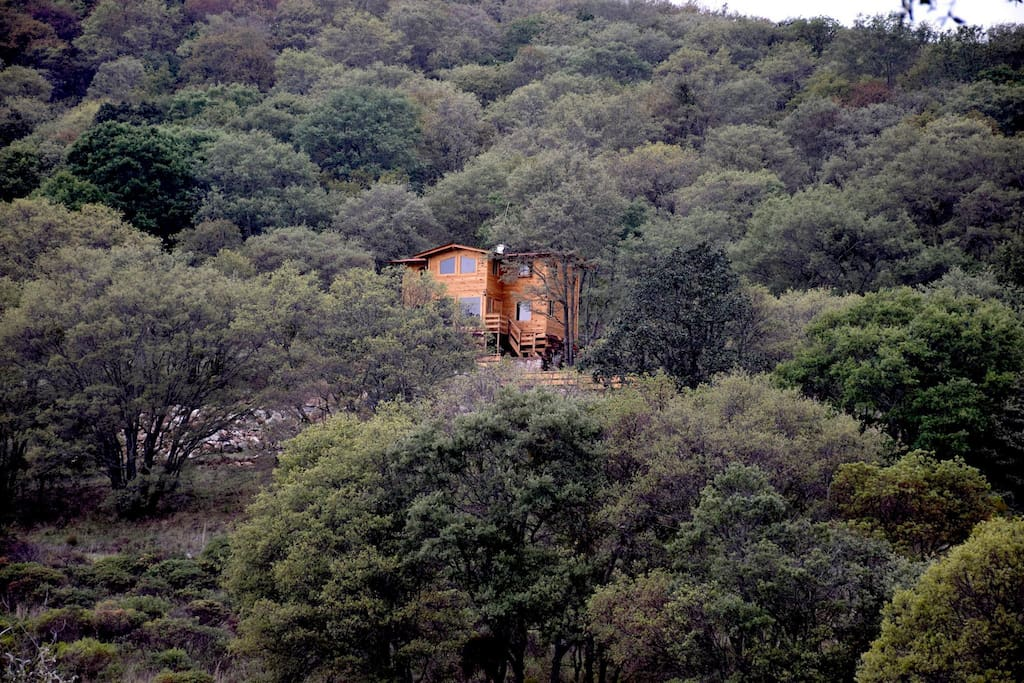 Cabaña con una vista increíble, totalmente de madera, en un bosque de pino-encino
