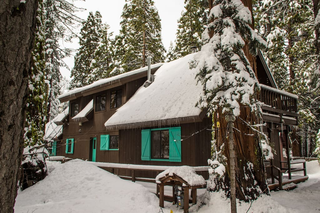 Walk to Homewood Ski Resort