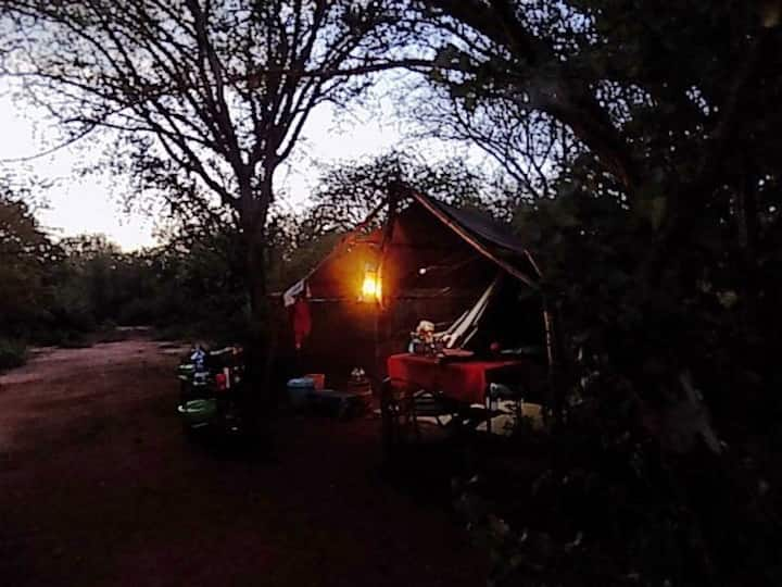 Nyika Campsite