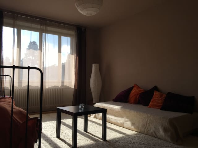 Big quiet room close to the lake - Genève - Appartement