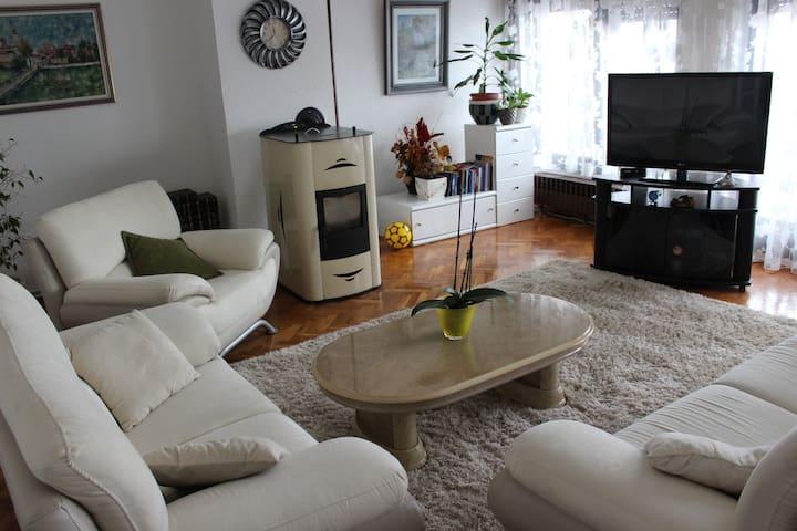 Apartment Pasa