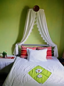 MAKAK KONAK Bed & Breakfast- THE GREEN ROOM - Ledenik