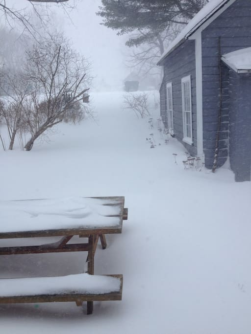 View of the back yard in winter