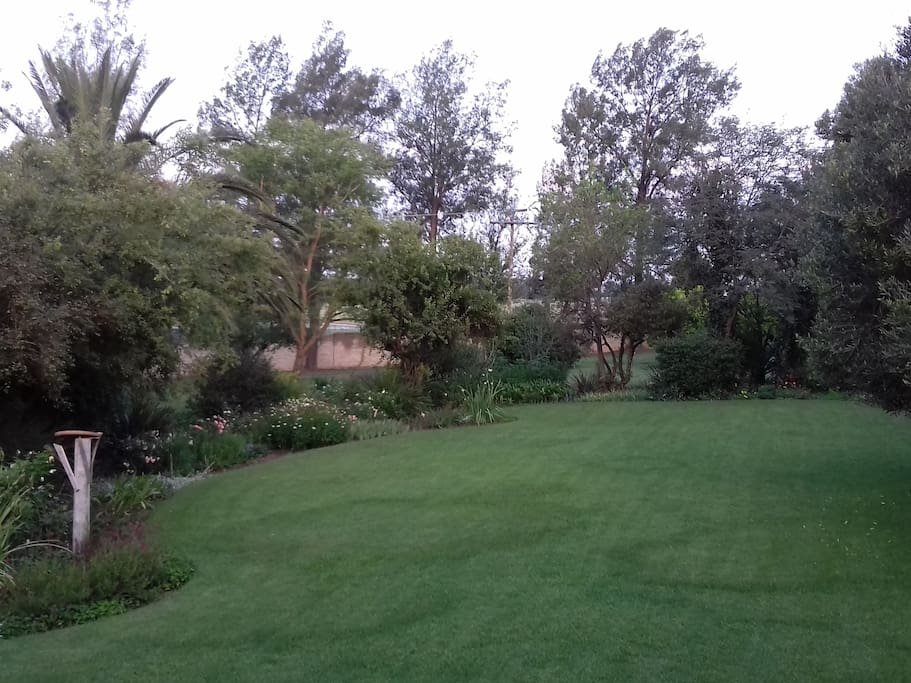 View of garden in front of our veranda
