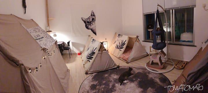 【草加Maid】手工少女篷 女生专属旅舍 可以有猫 南澳杨梅坑近较场尾