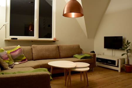 Spacious Flat in the Center - 弗倫斯堡(Flensburg)