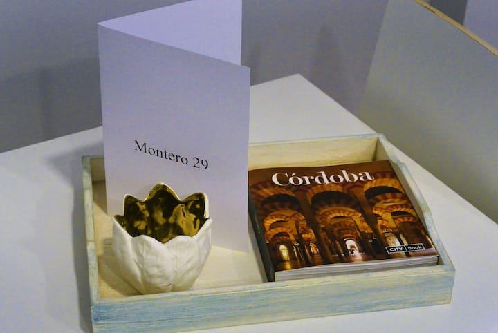 MONTERO 29