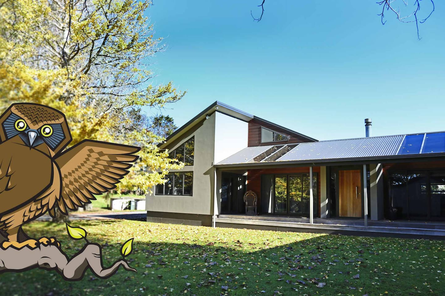 Taurangaruru  Bed & Breakfast - Waiuku, Auckland. Tauranga - is the meeting or resting place of the morpork (owl)  Ruru - is the owl  Waiukubnb  Only 45 mins from the Auckland Airport