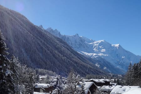Large apartment with stunning views, Argentiere