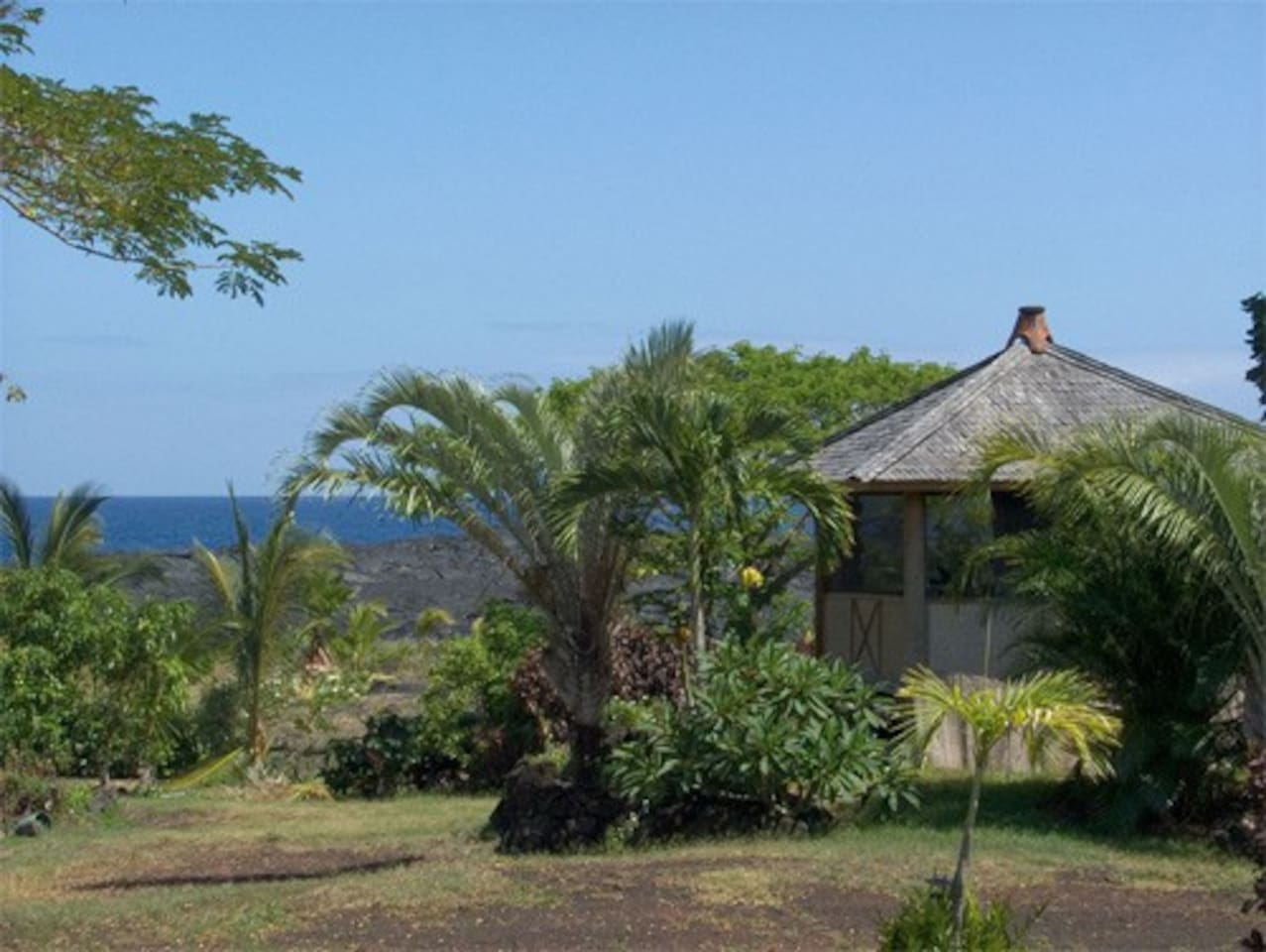 Awesome ocean views and you might see and hear whales from the oceanfront bali hut, Kalapana, Hawaii