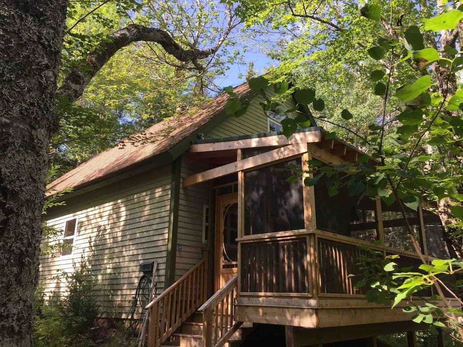We aren't kidding. This is a tree house without being perched above the ground! The screened in porch is huge and welcoming and allows you to immerse yourself in the sights, sounds and perfume of nature :)