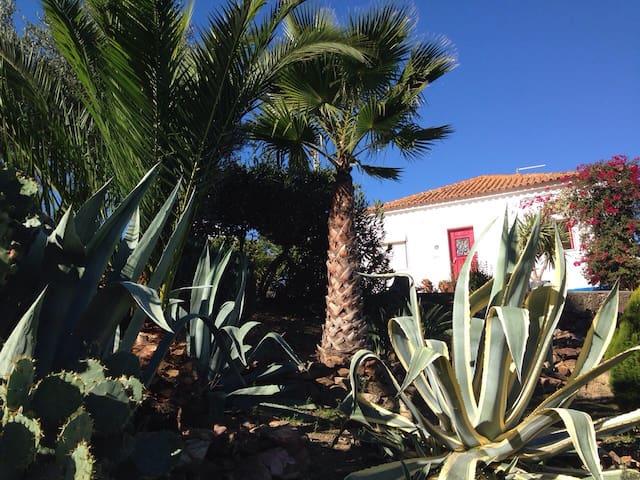 Quinta in the Alentejo