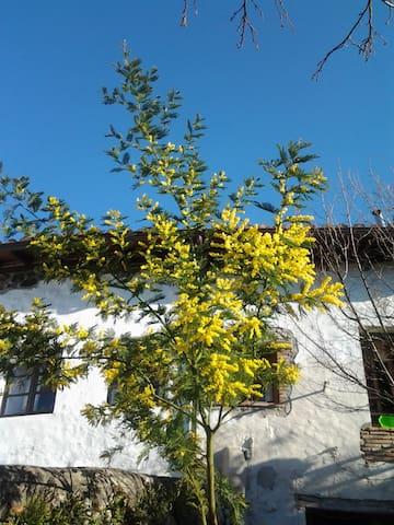Casa de Pueblo - Vallejo