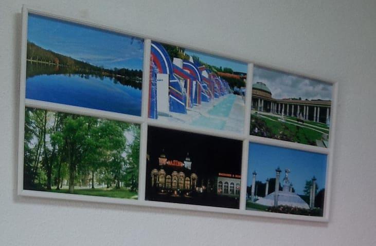 Parfait pour cures, courts séjours, vacances - Contrexéville - Lejlighed