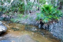 Wallarah National Park - coastal bushland,hike to some stunning ocean views and scenic lookouts.