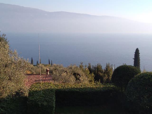 Villa negli Ulivi