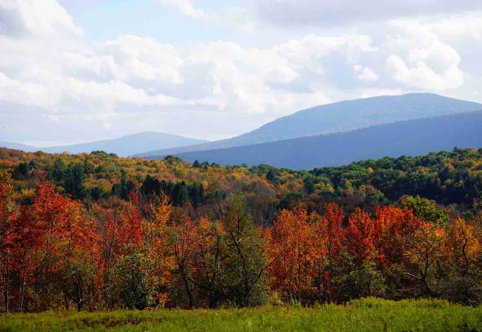 Take in the changing leaves in the Catskills
