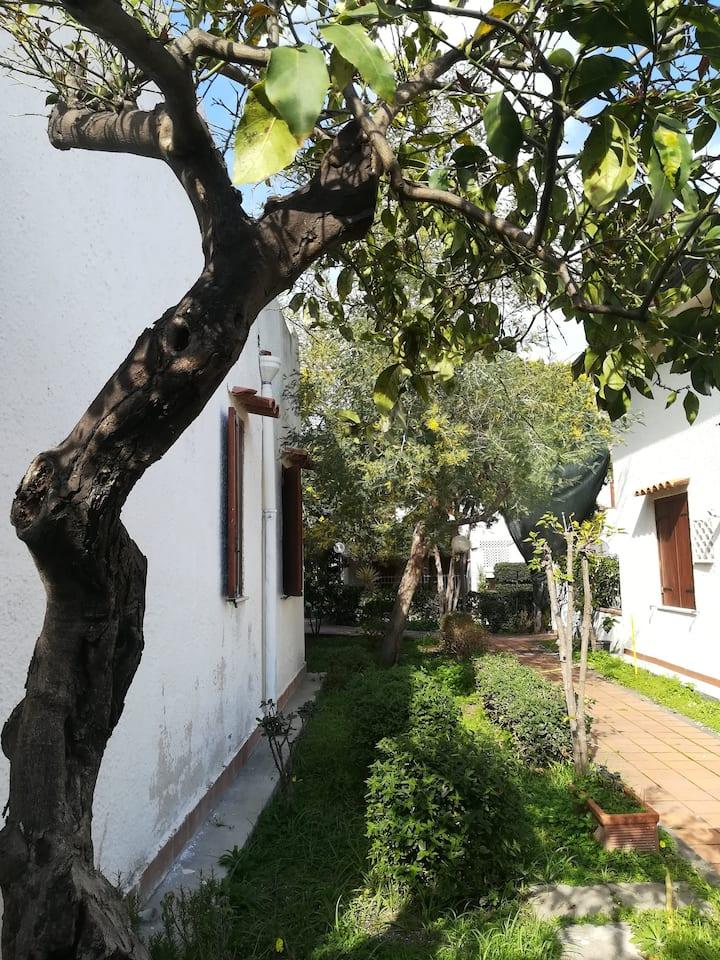"""Villetta in residence """"Le Mimose"""" - Recanati"""