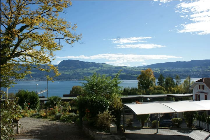 55m2 sunny flat, with view on lake Zurich