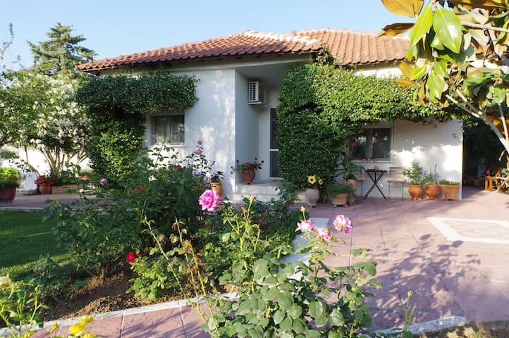 Εffie's cottage: Quaint and scenic  near Peraia