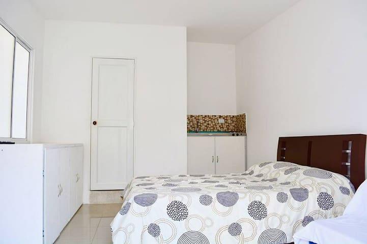 Apt 301  incluye: cama doble, sofa cama, nevera, utensilios de cocina, lenceria, wifi ,servicio de lavanderia, gas, parabolica, aire acondicionado, agua caliente y terraza.