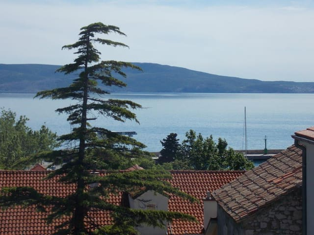 Apartments Sokolic 3 - Room + kichen with sea view - Novi Vinodolski - House