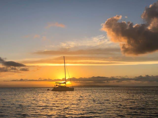Discover Isla Grande on Catamaran