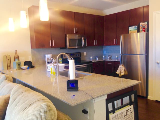 S Austin Apartment, No Fees, Near tons of shopping - Austin - Leilighet