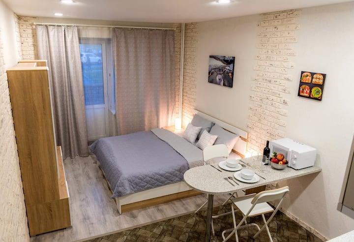 Большая и светлая квартира-студия с балконом