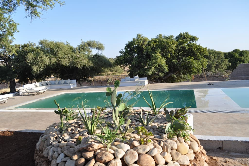Tigmin Eden is a peacufull place in the middle of Essauoira's countryside. Surrounded by argan trees near a traditionel Berber village