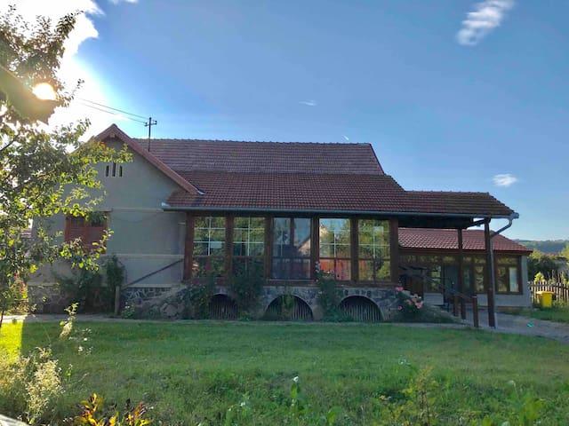 Casa Lia - spacious residence in Transylvania