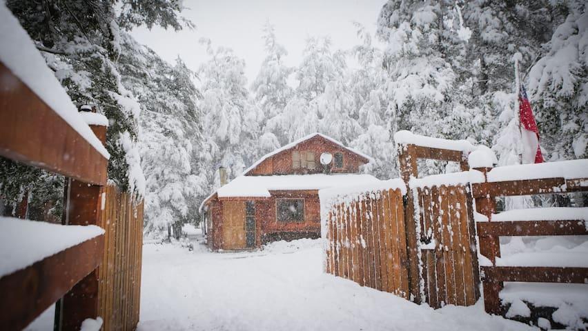 Llaima Camp, cabaña  a 4 km. de Parque Conguillio