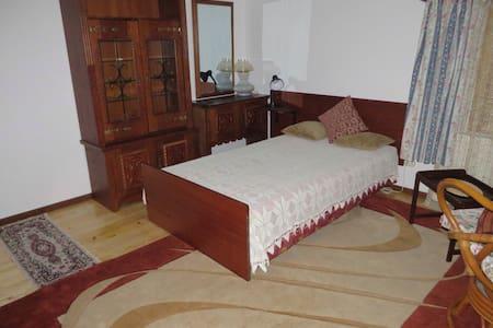 Charming quiet room in house - Galați - Casa