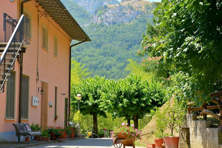 Vacation in unspoilt Tuscan nature to escape from the daily routine