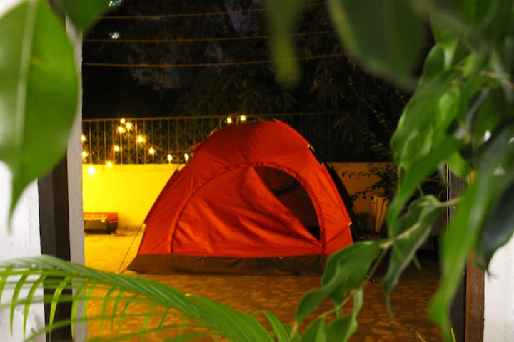 A Night in Tent under Open Sky