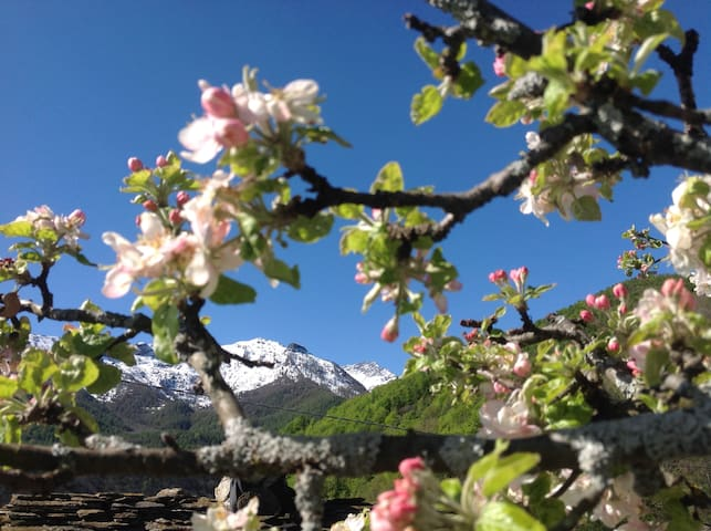 Casa rustica nelle montagne della Val di Susa