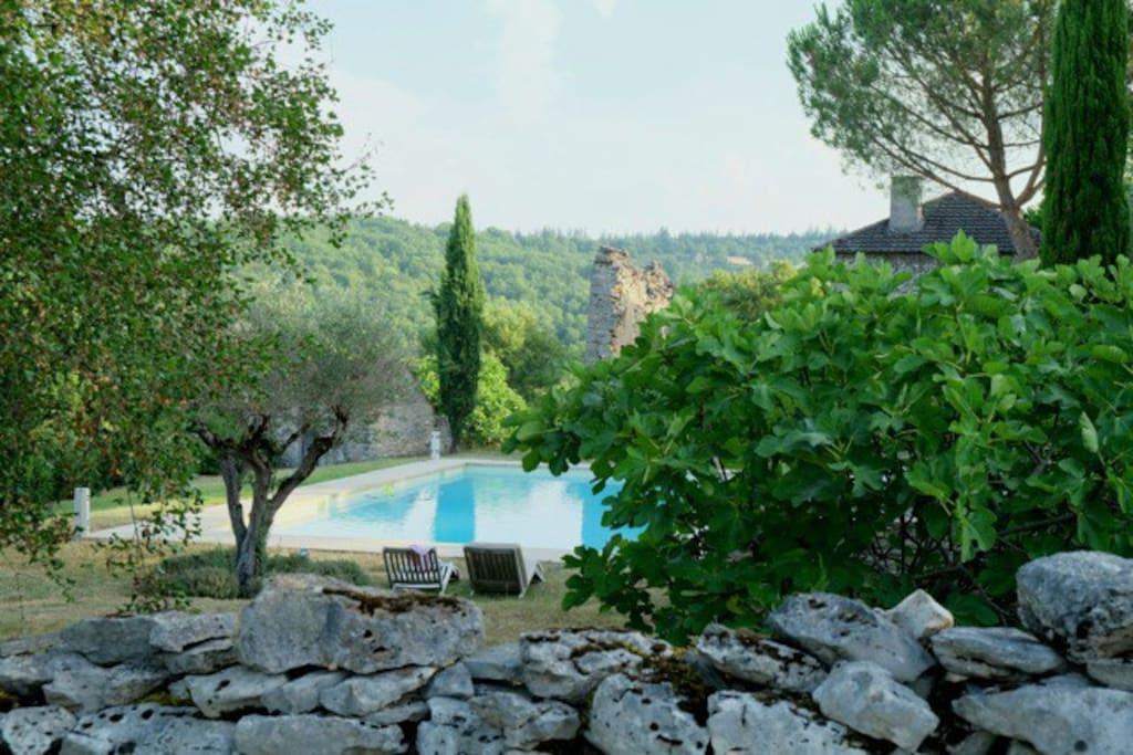 Muret, piscine