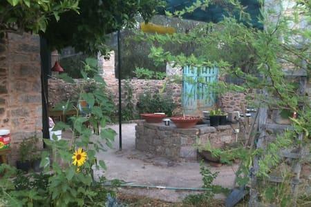 The House of plants - Volissos - Dům