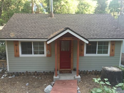 Tiny House, romantic, cozy 1928 cabin in Forest