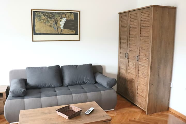 Apartman Max Luxus - free internet & parking place
