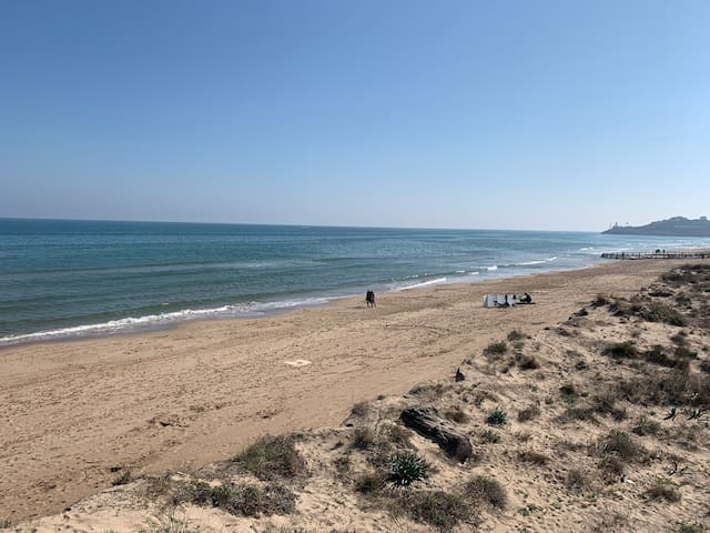 Casita idílica a pie de playa del Dossel