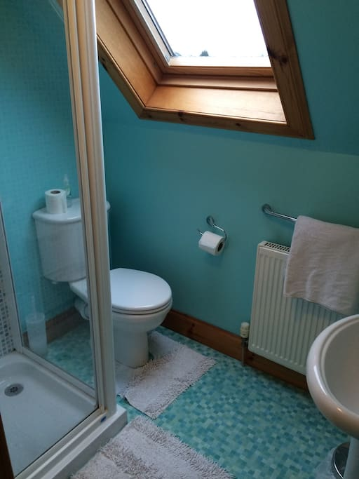 Private ensuite shower and toilet