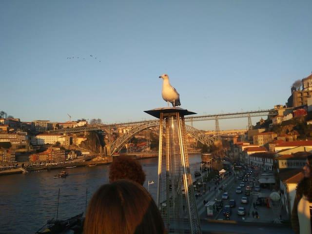 Vila nova gaia/river Douro