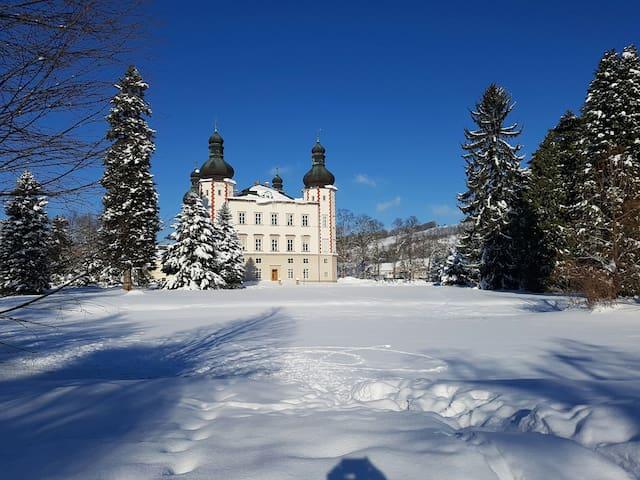 CENTRUM VRCHLABI ll - Vrchlabí - House
