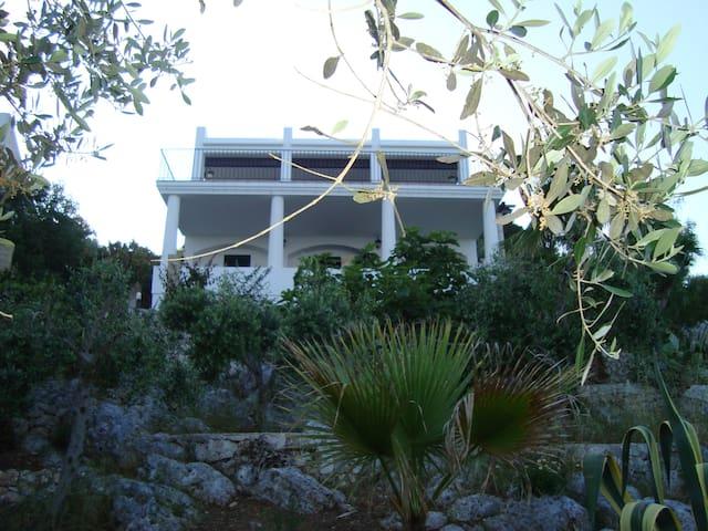 Vista facciata Villa