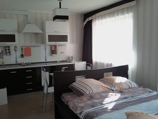 Посуточная аренда квартир - Angarsk - Appartement
