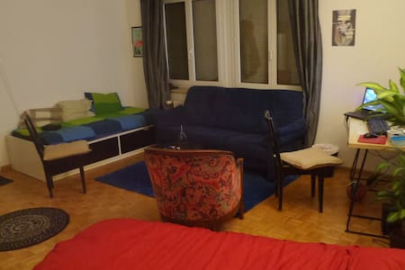 Single room with 2 beds and couch near art basel - Basel